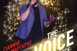 voice winner